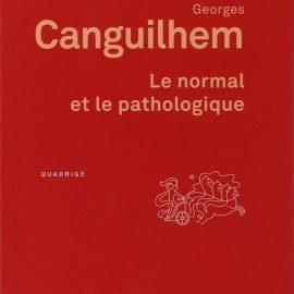 le-normal-et-le-pathologique-001